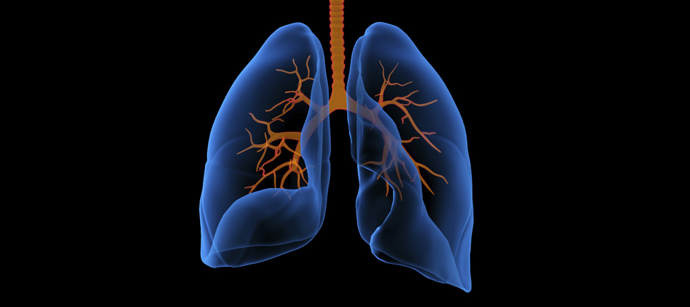 Duke uses new test to help diagnose lung cancer