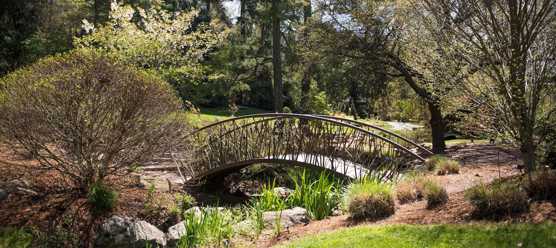 duke gardens bridge
