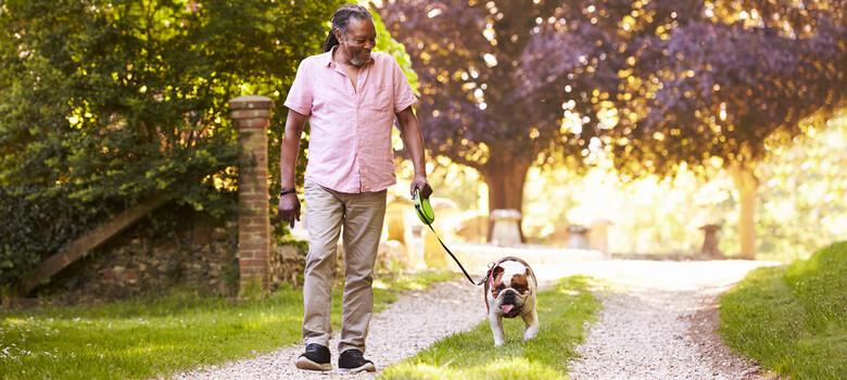 A man walks his dog