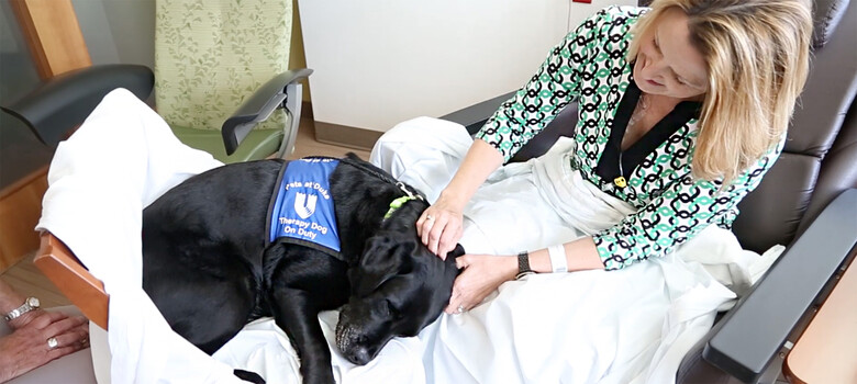 Pet therapy dog Kylie curls up next to a patient.