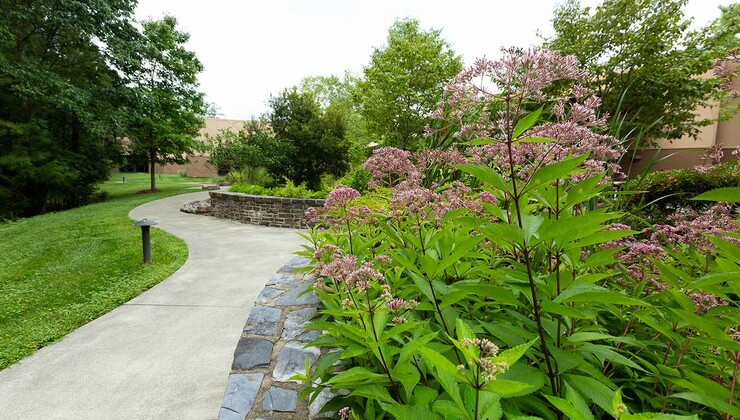The contemplative garden at Duke Integrative Medicine.