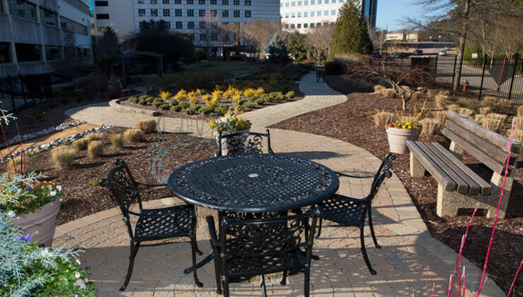 Garden at Duke Raleigh Hospital