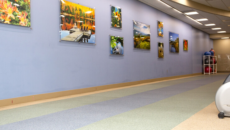 Wall Art at Duke Cardiopulmonary Rehabilitation at Croasdaile